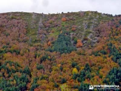 Hayedo de Tejera Negra [Serie Clásica];mapas rutas senderismo material montañismo
